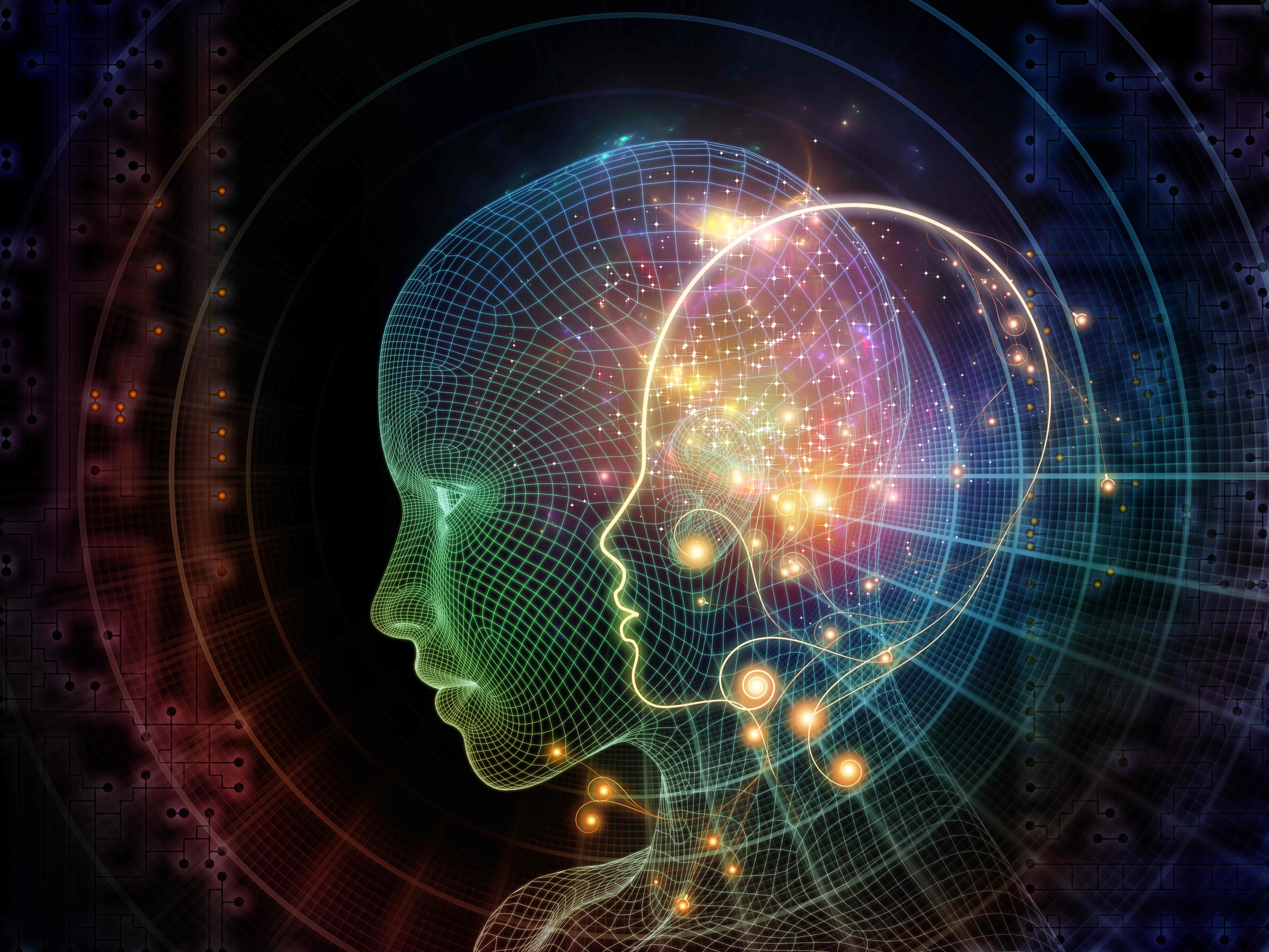 L'Intelligence Artificielle à l'école d'ingénieurs en informatique EPITA