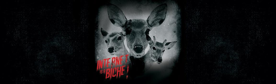 Internet is a biche !