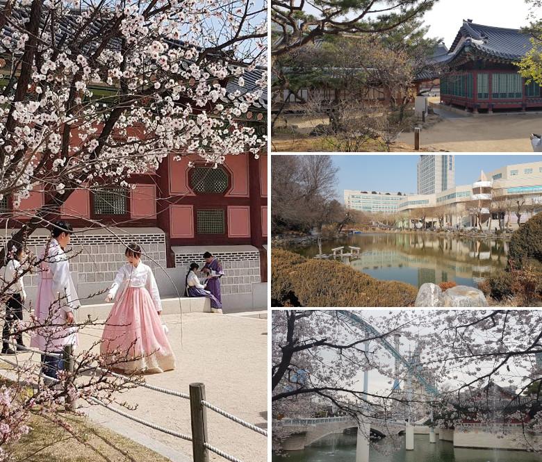 Semestre International en Corée du Sud x Inha University